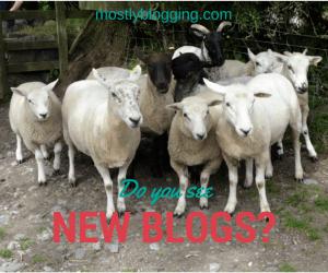 Blogging Networking Opportunities